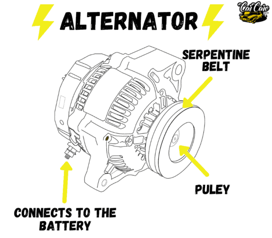 Parts Of Cars, Their Location and Function - Alternator