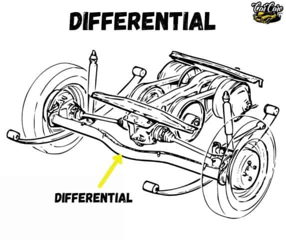Parts Of Cars, Their Location and Function - Differential